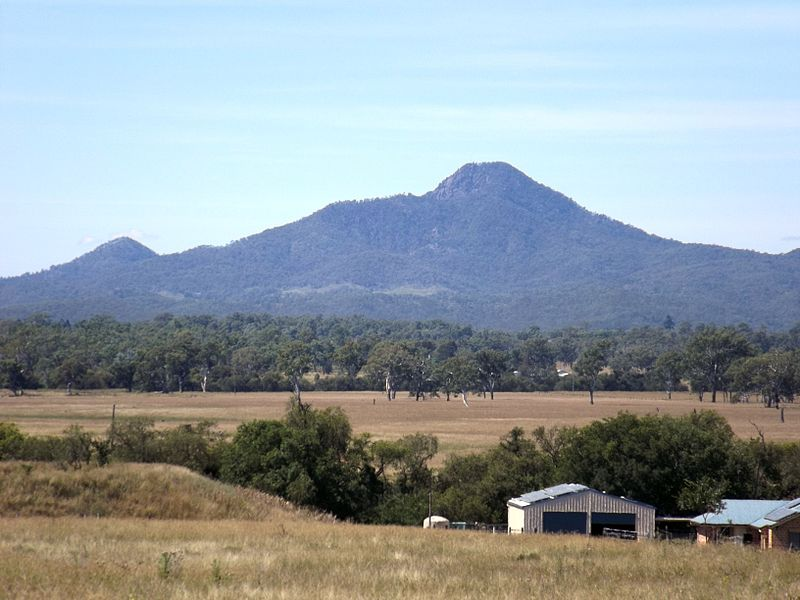 Peak Crossing, on the edge of Biosecurity Qld's Fire Ant Program operations since 2001, a high risk area since 2012, still heavily infested. A $500m, 19 yr failure. Time for a Royal Commission.