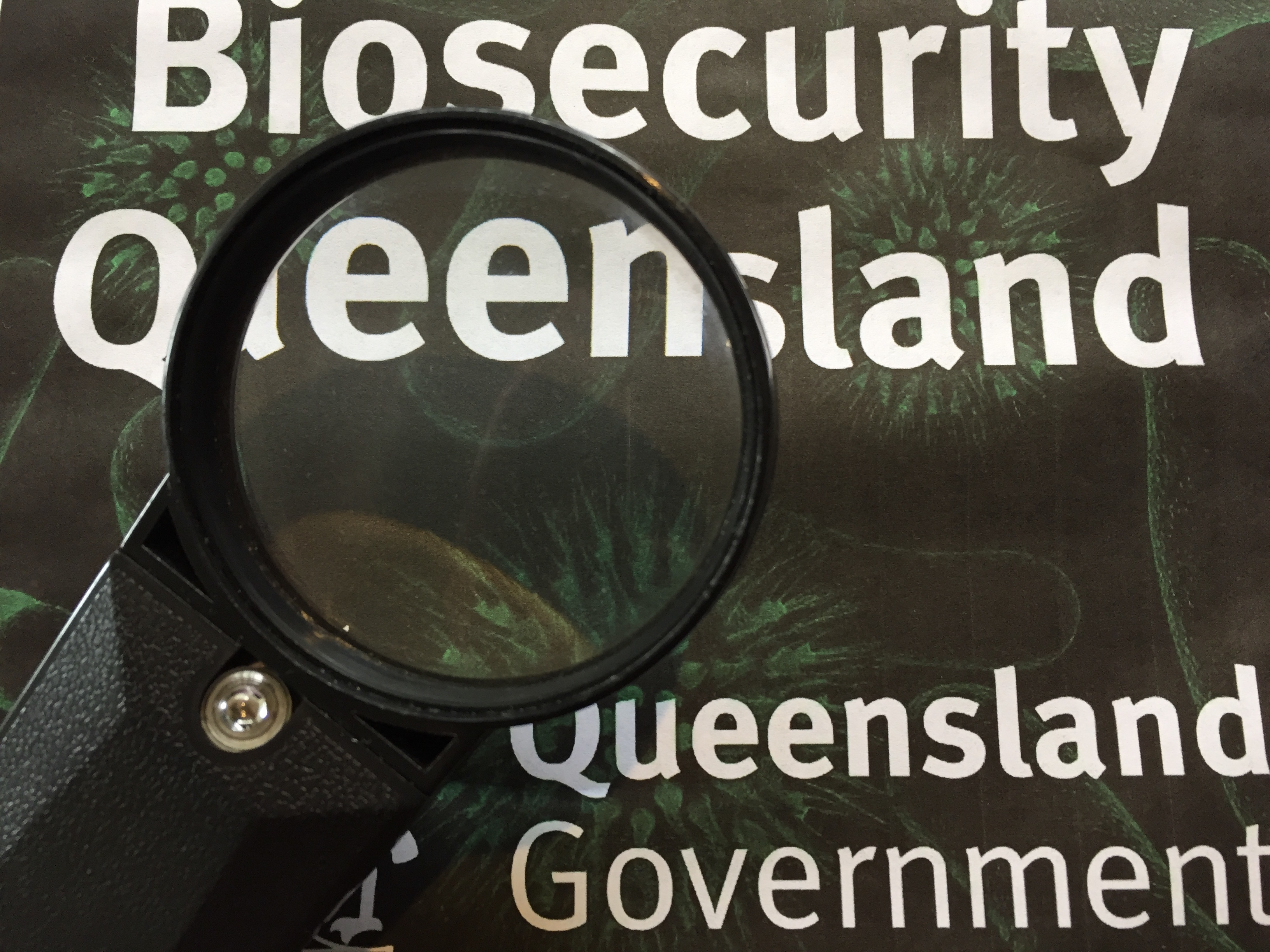 GM of Biosecurity Queensland's fire ant program tried to shut down criticism at a community forum in Gatton with a 'divide and conquer' format. They didn't let him.