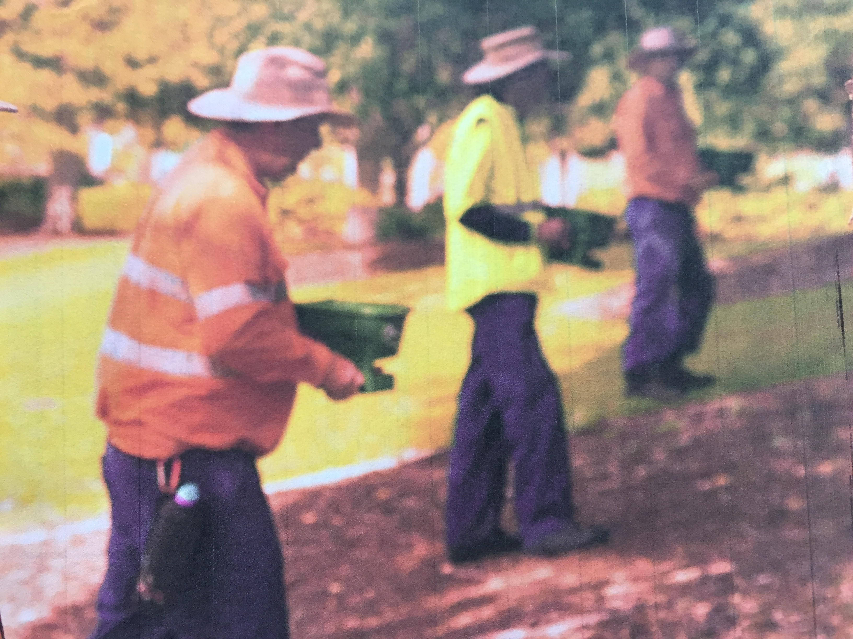 Biosecurity Queensland's fire ant program is a Commonwealth funded jobs program for Queenslanders: not an incentive to eradicate fire ants. Steering Committee responsible.