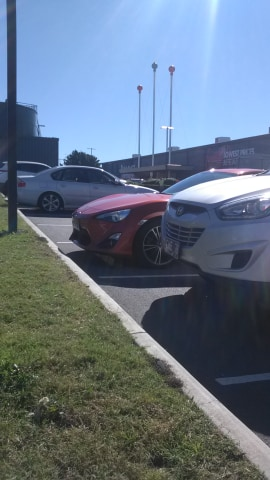 A shopper was stung by fire ants in Bunning's car park on the weekend. Biosecurity Queensland puts public safety at risk. Time for a Royal Commission.